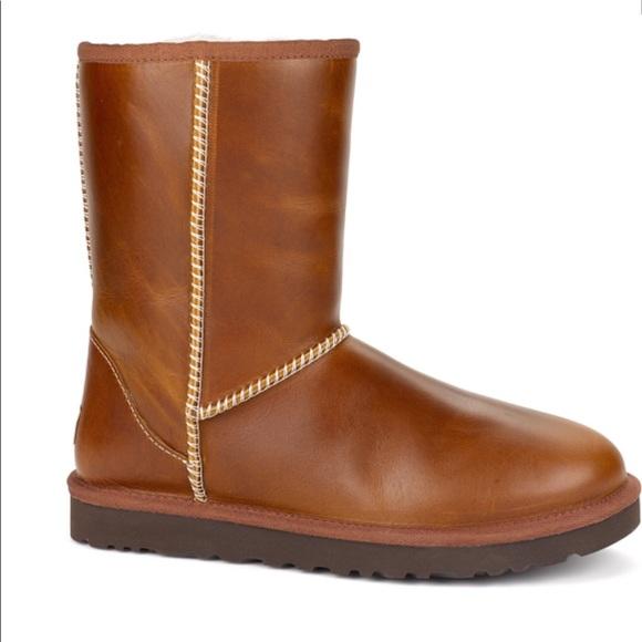 346e20b8661 UGG 1005372 - Classic Short Leather Chestnut